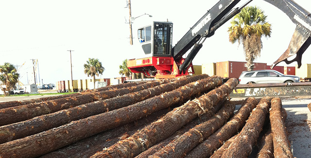 Garley Forest Products Southern Yellow Pine Exports